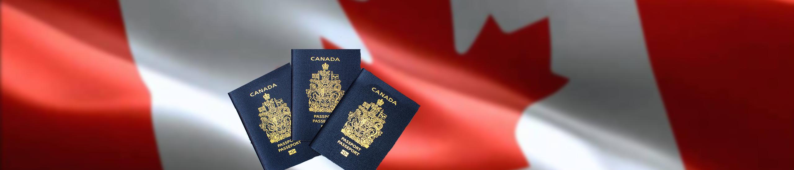 Фото У минулому році в Канаду іммігрувало 8 000 мільйонерів