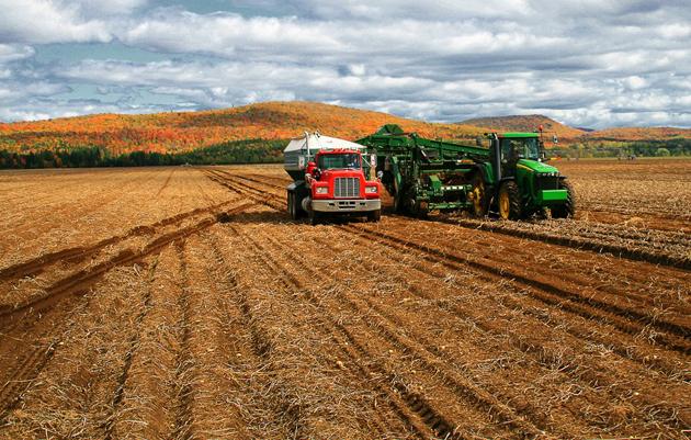 Фото Пілотний імміграційний проект для агропродовольчого сектору